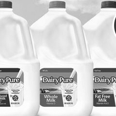 dairy pure case study
